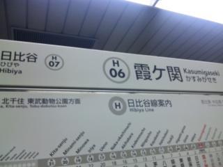 SH381942.jpg