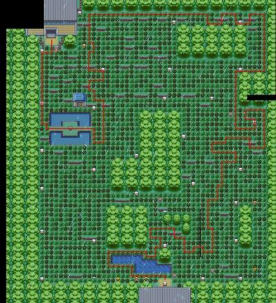 トキワの森
