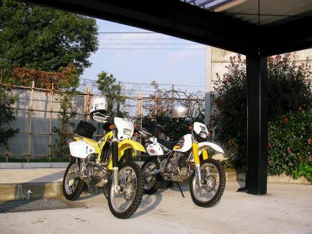 SANY0001_20101127225017.jpg