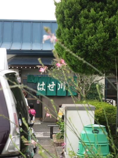 hasegawa2013b.jpg