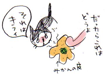 bg1-27e.jpg