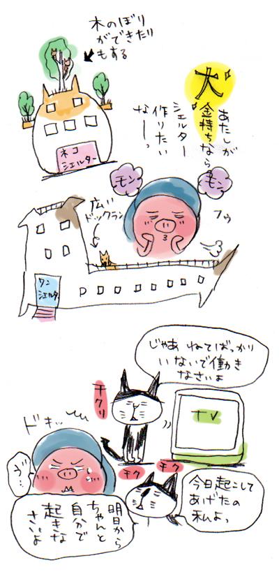 bg1-31.jpg