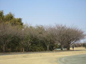 1.日高運動公園③