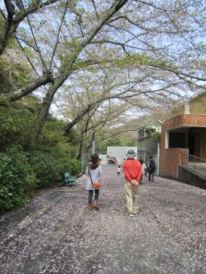 1.日本平動物園⑥