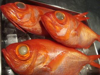 銚子の金目鯛