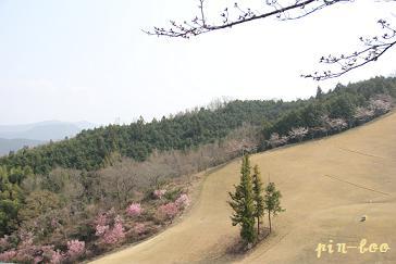 ゴルフ3.21
