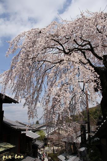 3.27京都1