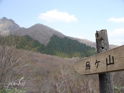 5.3大山9