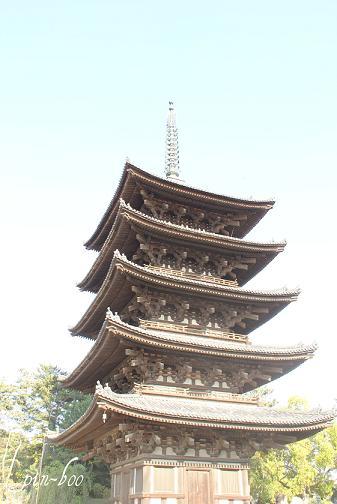 5.6奈良3