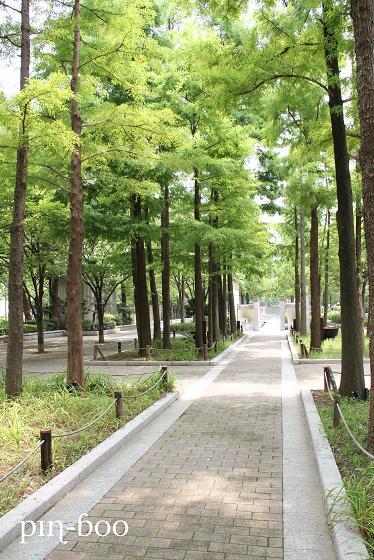 8.2公園
