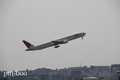 8.21JAL1
