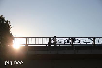10.14太陽