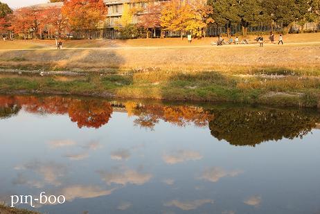 11.23京都2