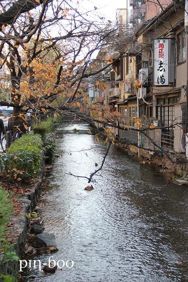 12.11高瀬川