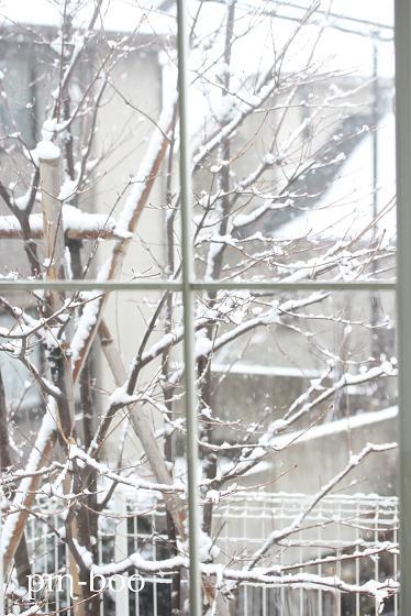 2.11雪2