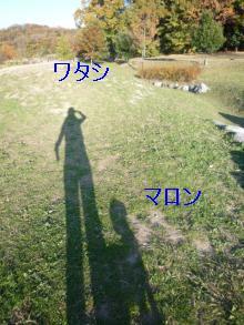 P1020816_convert_201001071259061.jpg