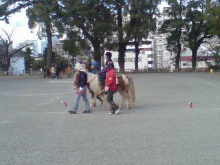 20110116150633.jpg