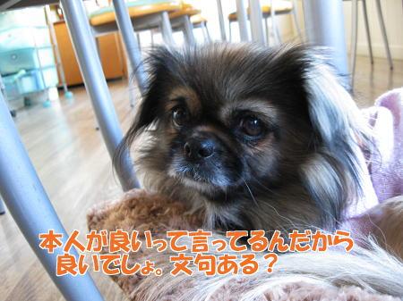 IMG_2692.jpg