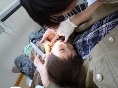 歯科検診中