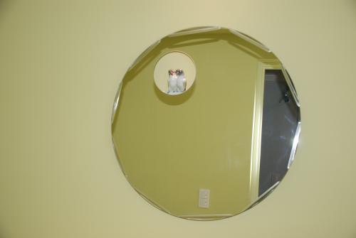 ボタンインコ鏡