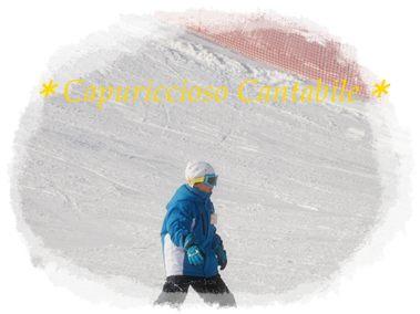 スキー1・30