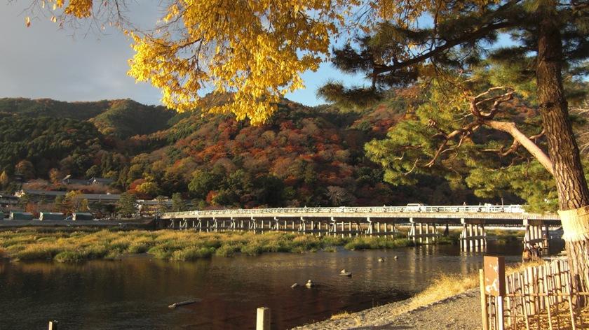 kyoto-2010-11_02.jpg