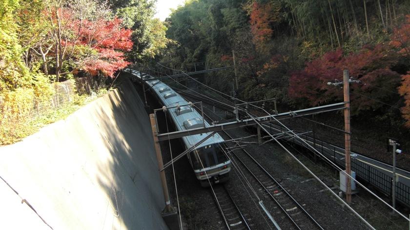 kyoto-2010-11_04.jpg