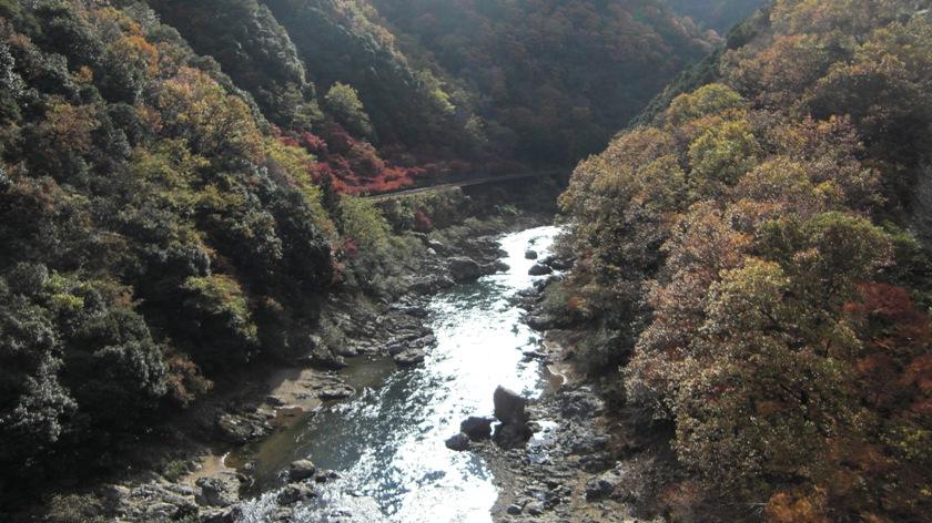 kyoto-2010-11_05.jpg