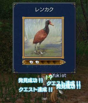 水の上に立つ鳥ハッケン!