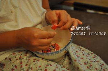 sachet1_convert_20101005224503[1] (2)