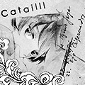 Catailll