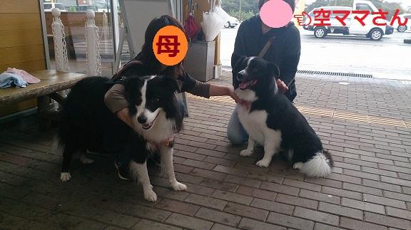 s-キャッチ空君20131015-2