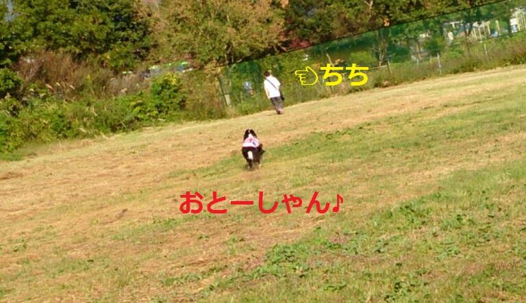 IMG_20131006_200244.jpg