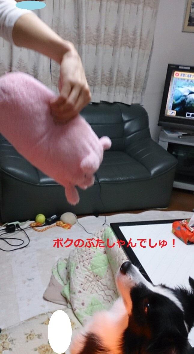 IMG_20131111_213449_20131112053841e91.jpg