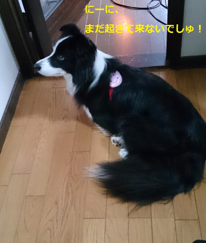 IMG_20131112_204350.jpg