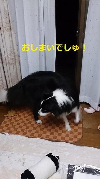 s-DSC_2013.jpg