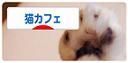 コピー ~ DSC_0059 - コピーのコピー