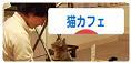 DSC_0139 - コピーのコピー