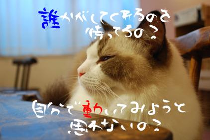 0927 (27)のコピー - コピー