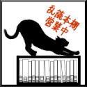 猫の目クルクル乱読本棚
