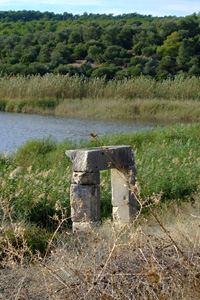 沼地と石門