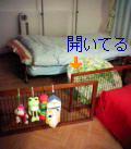 060411_201150.jpg