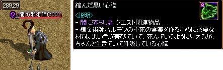 20100224_23.jpg