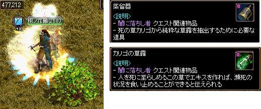 20100224_25.jpg