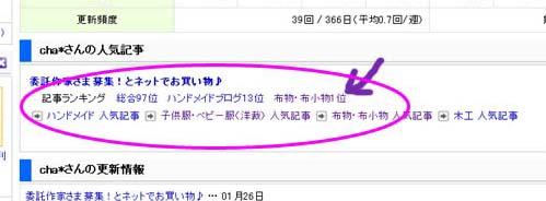 20110129ブログ村01