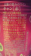 009_20100322175139.jpg