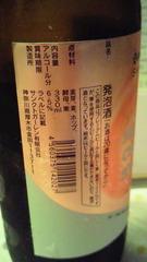03_20100322174523.jpg