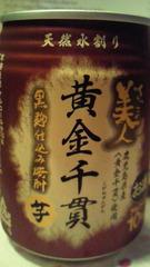 08_20100322173824.jpg
