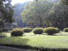 200911082.jpg