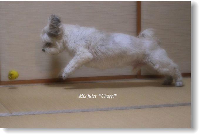 小田家写真館 019編集